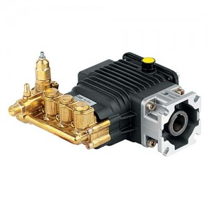 """AR 2500 PSI 2.5 GPM 3/4"""" Hollow shaft with F25 flange Pressure Washer Pump # RSV2.5G25D-F25"""